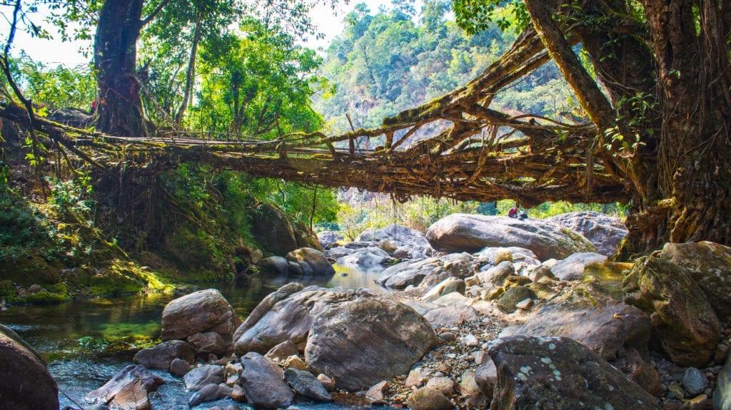 Meghalaya Bridge