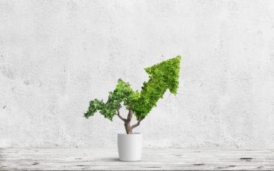 How Does Nature Define Profit?